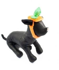Ropa Halloween para perro sombrero calabaza