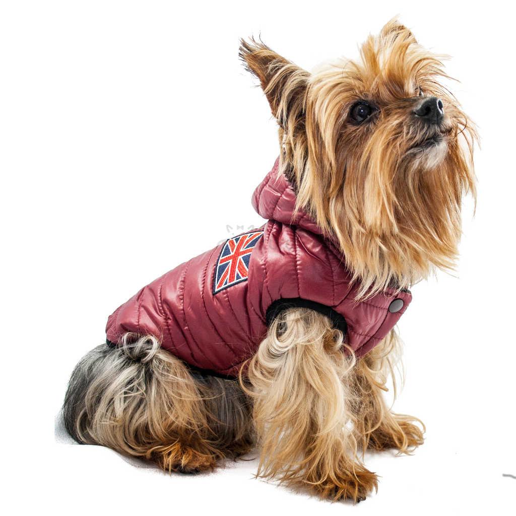 ALT abrigo para yorkshire terrier
