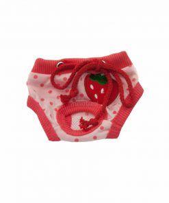 Bragas Perra Underwear Roja Rosa Lunares Fresa Ropa Perros (2)