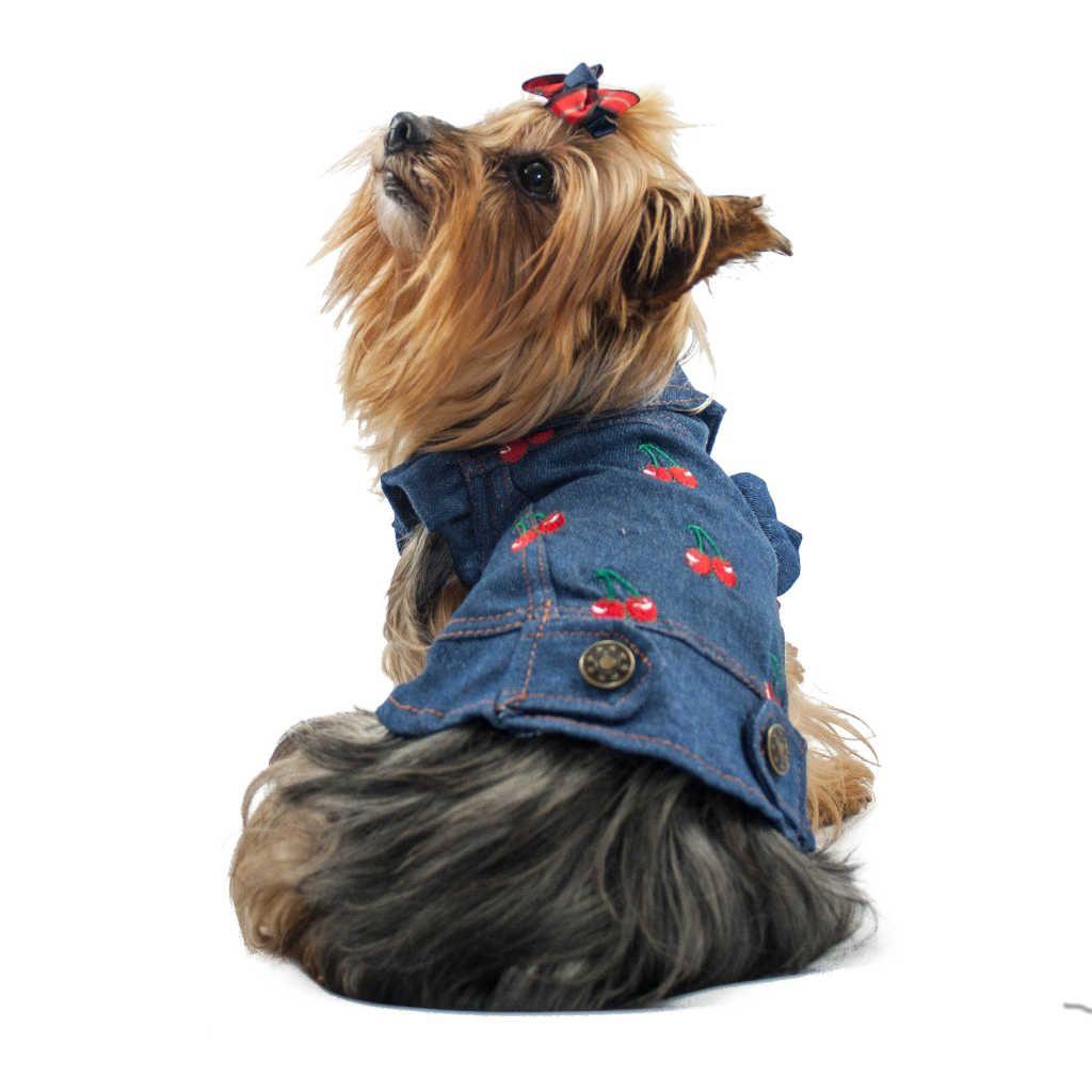 ALT ropa vaquera para perros