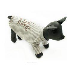 Camiseta Perros Rayas Gris Cuello Alto Ropa Perros Primavera Otoño (1)