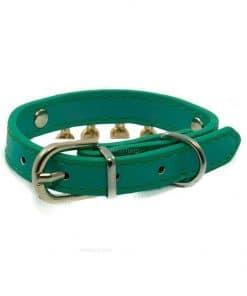 Collar Perro Lujo Brillantes Circulos Dorados Azul Turquesa (2)