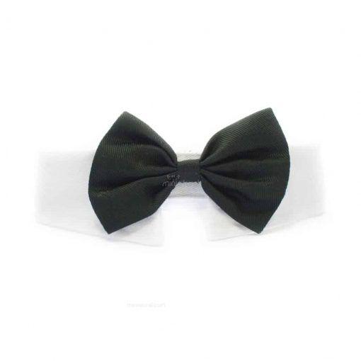 Pajarita Perro Negra Ceremonia Cuello Camisa