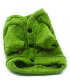 Rebeca Punto Perro Verde Botones Negros Ropa Perros Primavera (2)