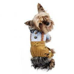 alt ropa perro hipster ropa casual