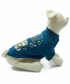 Sudadera Azul Gatos Lloviendo Paraguas Ropa Perros Primavera (3)