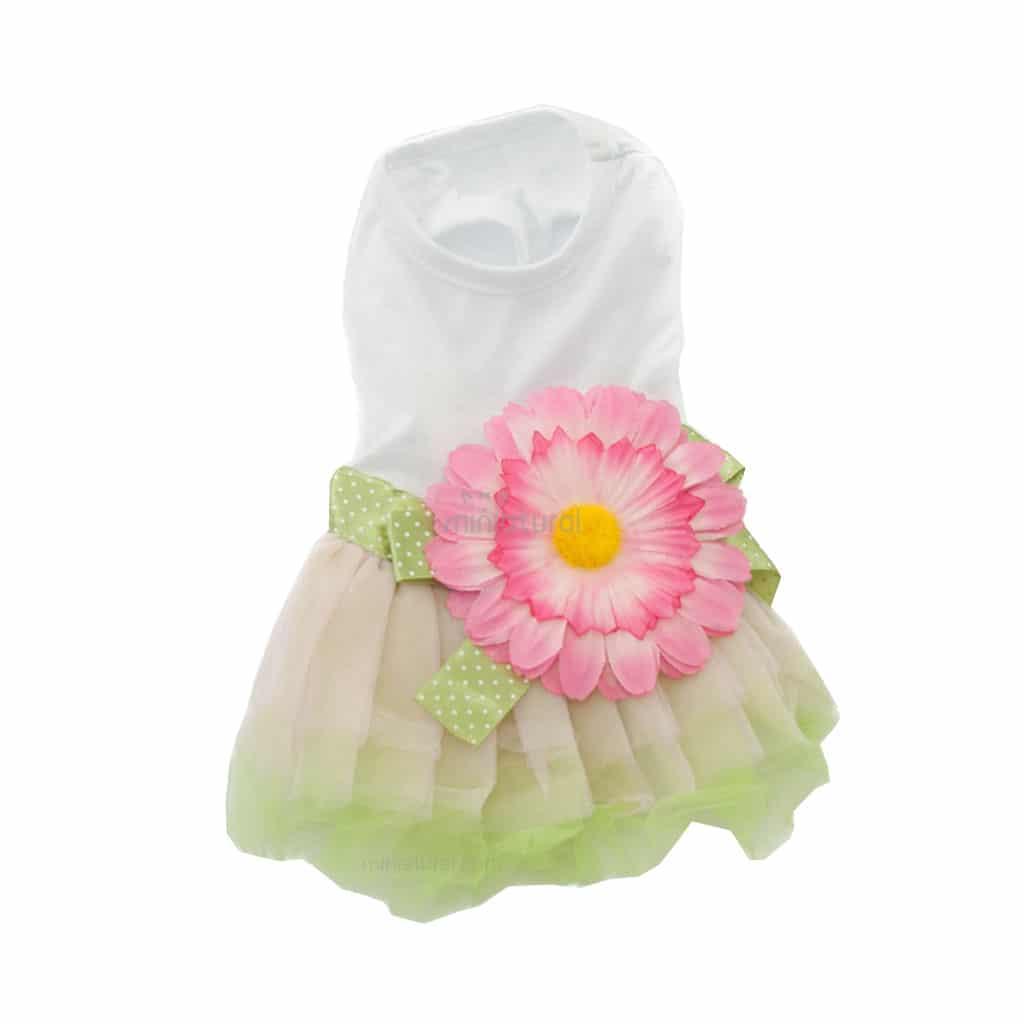 Vestido Camiseta Blanca Falda Verde Flor Grande Rosa Ropa Perros Verano (1)