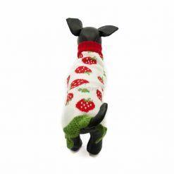 Vestido Teckel Punto Perro Salchicha Fresas Ropa Perros Primavera (2)