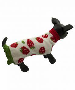 Vestido Teckel Punto Perro Salchicha Fresas Ropa Perros Primavera (3)